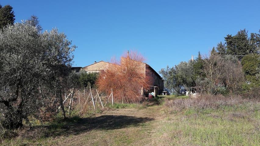 Casa Ork.... sulla collina a 250 metri d'altezza....a meta' strada tra montelupo fiorentino e Montespertoli...( posizione dominante ).