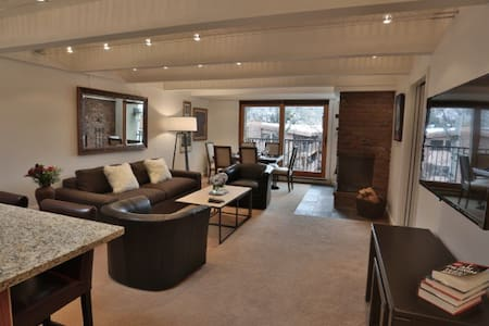 901 East Hyman Avenue 2 Bed 2 Bath - Aspen - Condominium