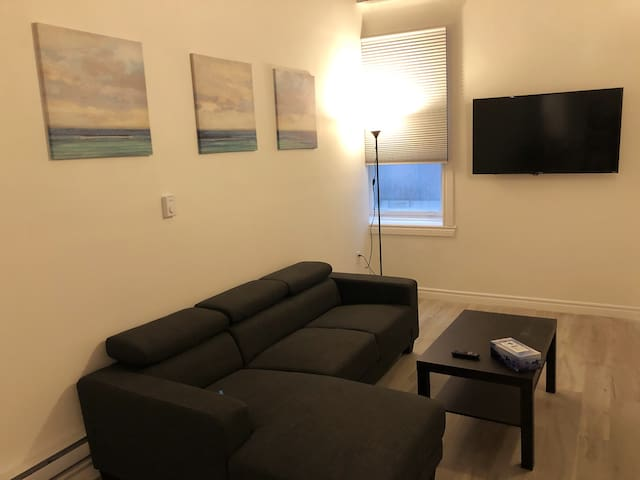 NEW SPACIOUS RENOVATED DOWNTOWN APARTMENT