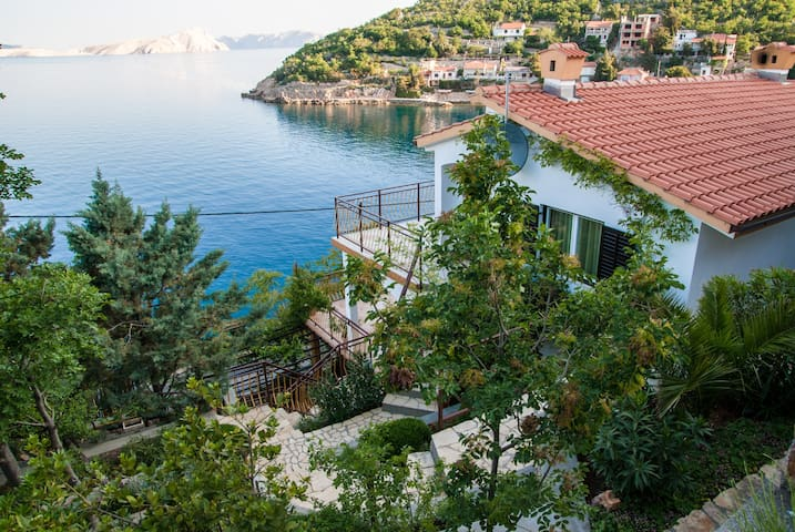 Apartment Pavletic - Starigrad - Byt