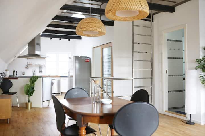 Big Scandinavian design house in Copenhagen SV.