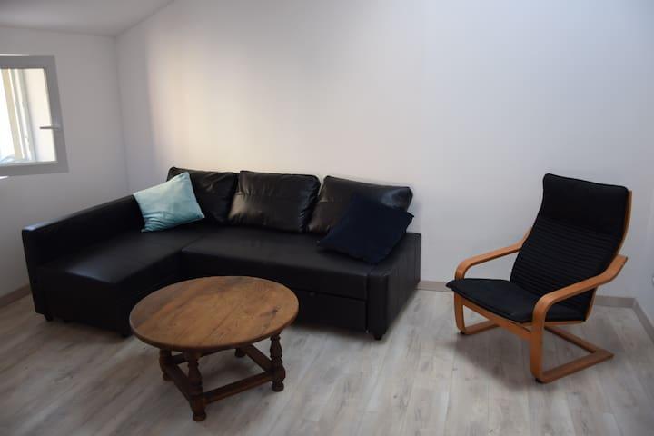 Salon avec canapé convertible en lit 140 x 200