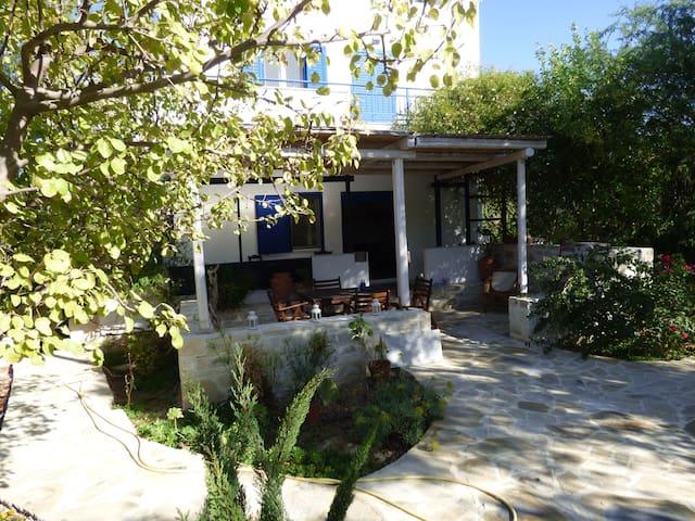 Oleander in hidden Crete - Sivas - Pis
