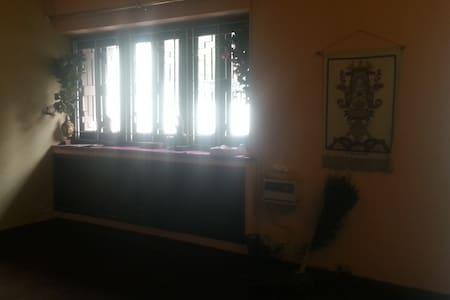 spacious cozy central spa yoga mkt metro gymnearby - Nueva Delhi - Casa