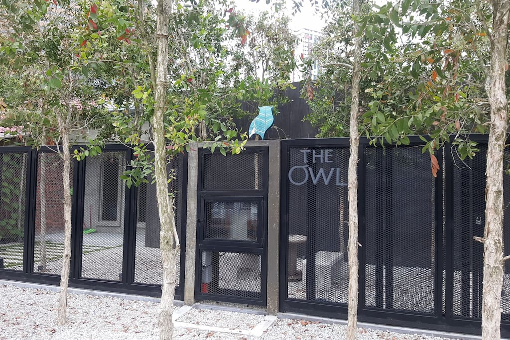 The Owl Homestay