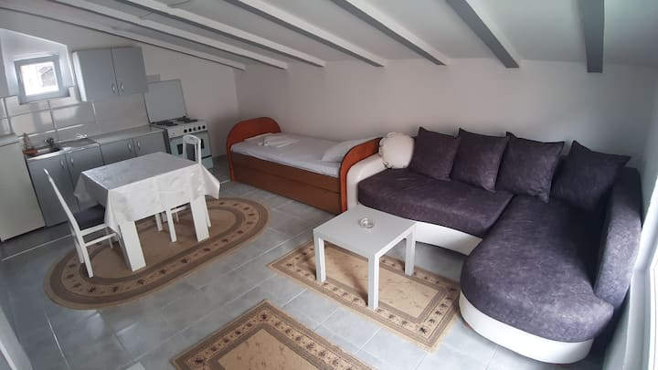 Apartman Sava