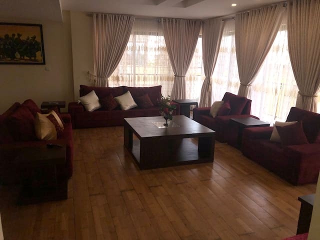 Luxurious Private Penthouse Apartment in Ikoyi