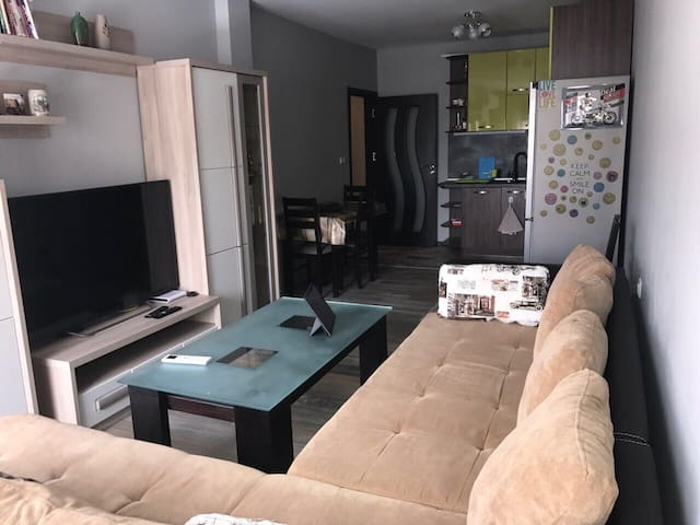 Luxury two-bedroom new flat near centre