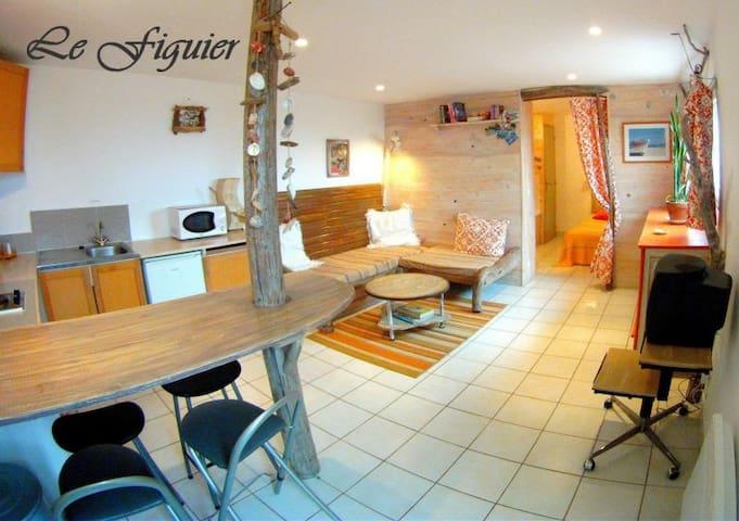 Location longue durée (30jrs et +)  plage + jardin - Béziers - Appartement