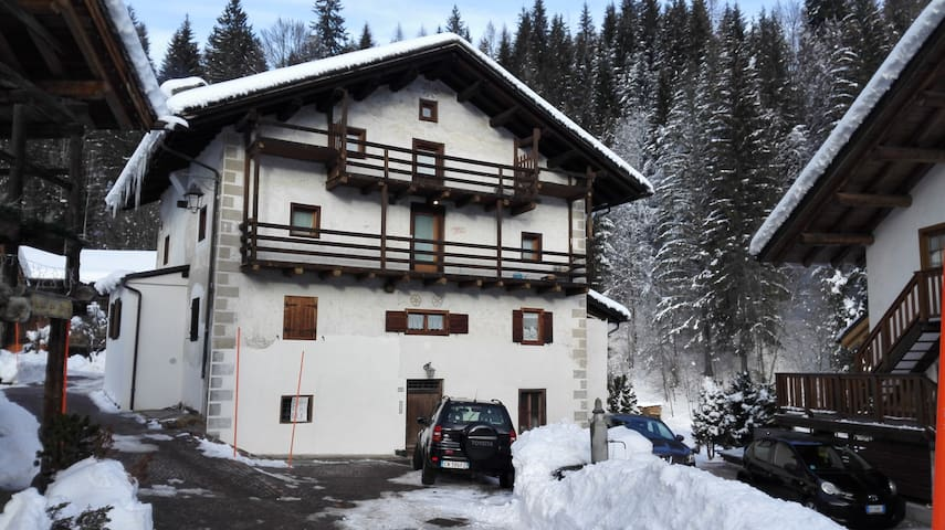 Traditional house near the ski slopes