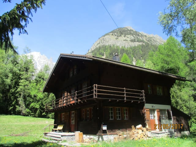COSY CHALET for WORK & FUN
