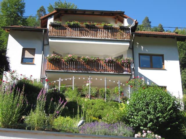 Ferienwohnung in Schönau bei Heidelberg - Schönau - Huoneisto