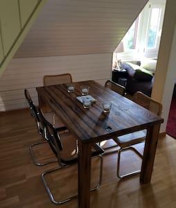 Cozy charming flat - Ennetbaden - Huoneisto