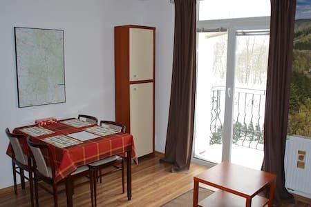 Apartament w Stroniu Śląskim - Stronie Śląskie