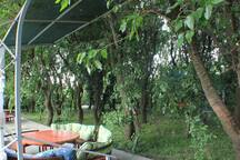 entrance of the forest equiped with dinning tables