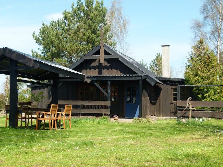 Forest Cabin near Svaneke