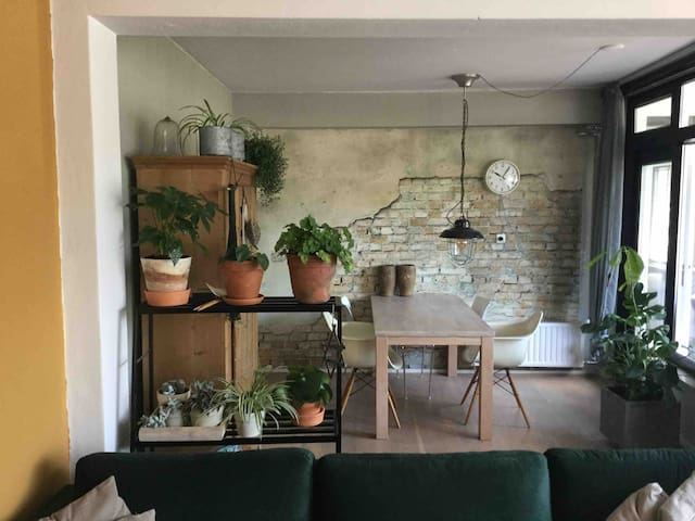 Cosy apartment in the city centre of Groningen