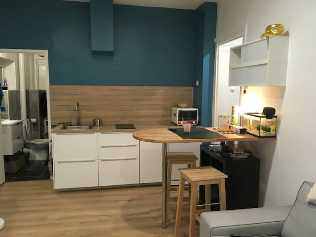 Appartement lyon 8 eme arrondissement