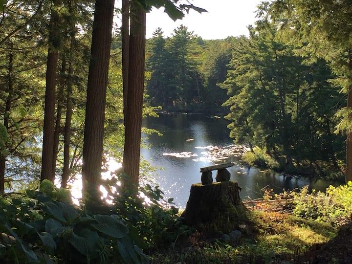 NEW! Stunning Muskoka Lakefront Retreat Huntsville