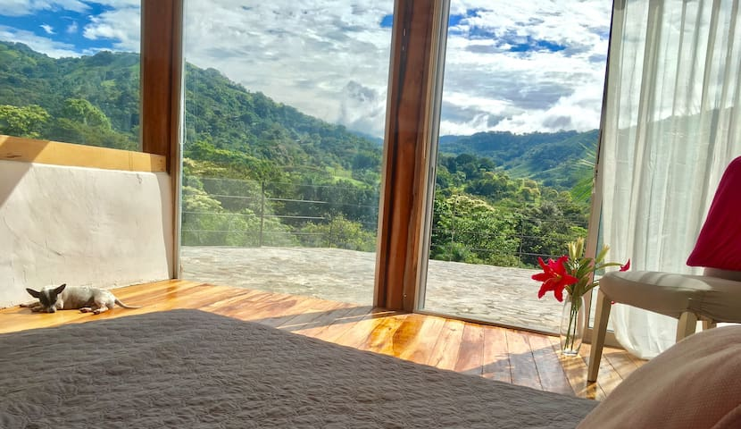 Experience Eco Living in CR's Best Eco Village!