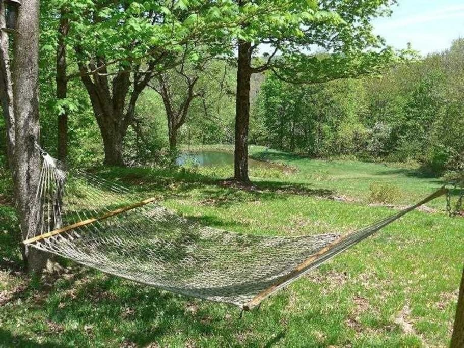 View of Pond with Hammock