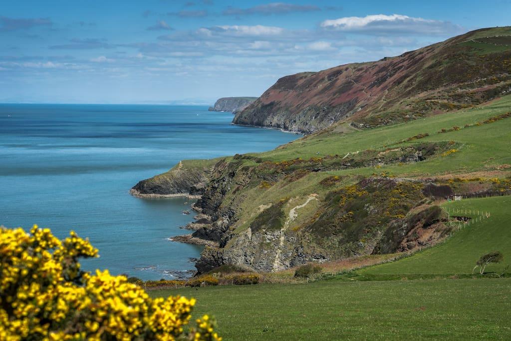 Beautiful coastal walks