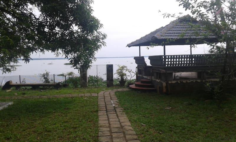 Sunny greenery lake view - Alappuzha