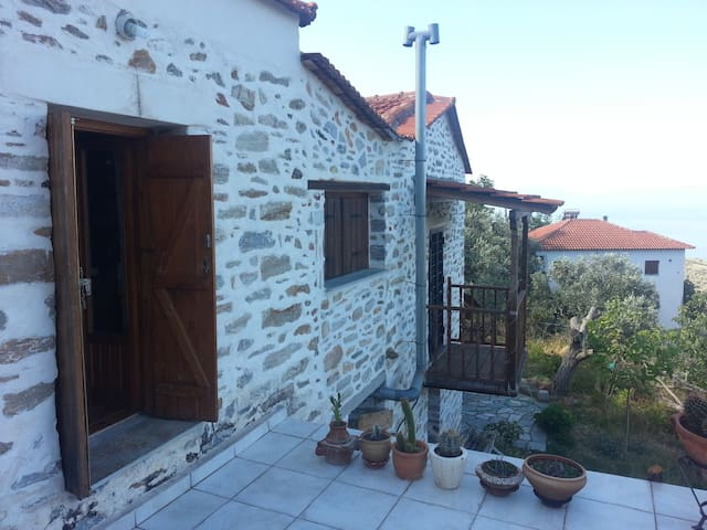 Two-floor based traditional house - Μαγνησία - House