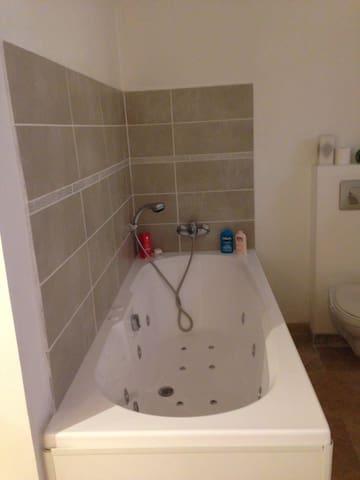 Nécessaire de douche et de toilette fournie , ainsi que les serviettes et tapis de bain.