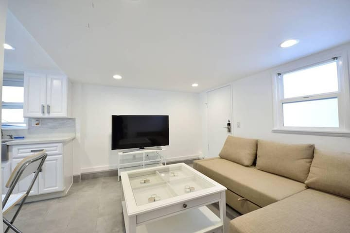 Living room with pull-out queen bed and 55' LED TV