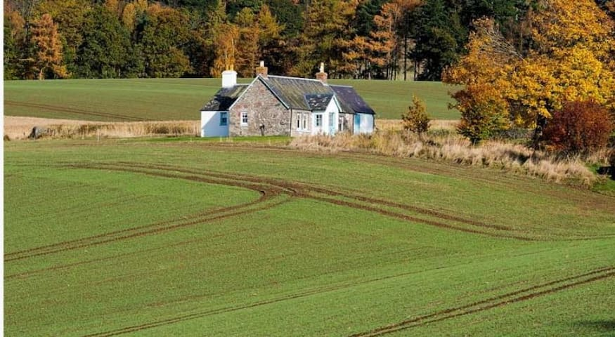 Cairnmuir Cottage - A Peaceful, Romantic Hideaway - Murthly - Casa
