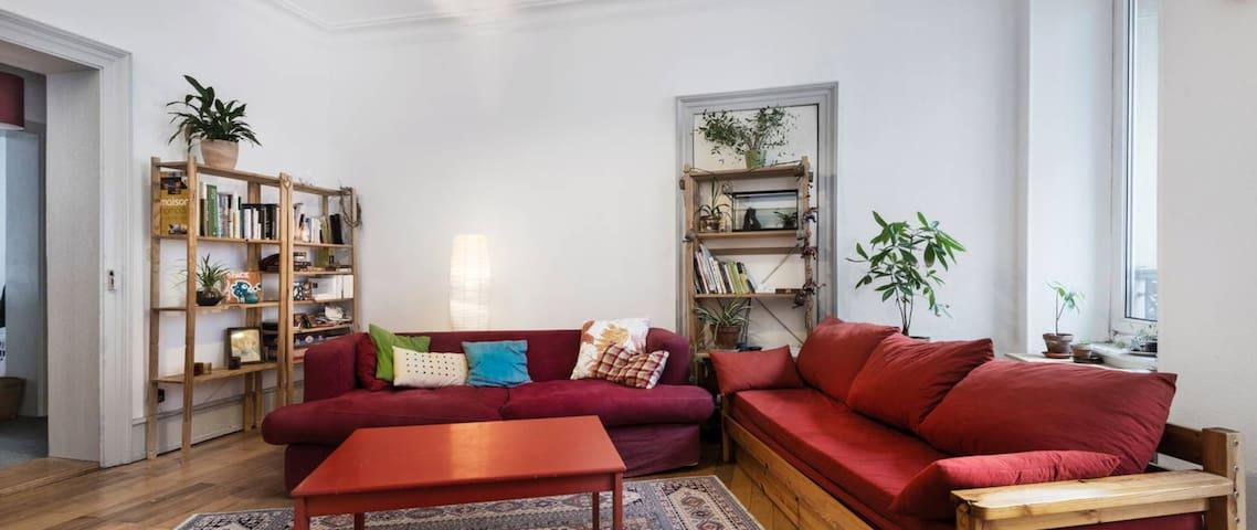 Grande chambre dans l'oasis - Strasbourg - Apartment