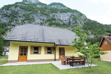 Yellow house in Trenta
