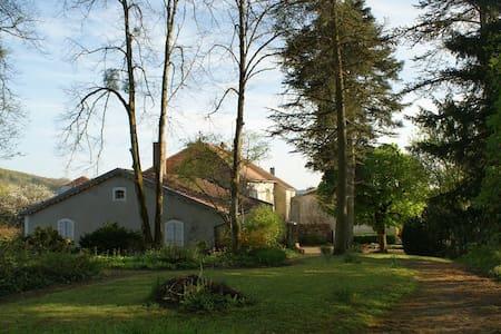 La Bagatelle Chambres d'hôtes - Bourbonne-les-Bains - Oda + Kahvaltı
