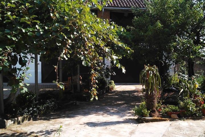 Casa Arte e Aromi alloggio SOTTOBOSCO