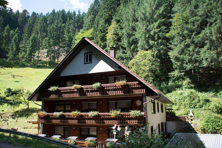 Ferienwohnungen Huber/Talblick - Bad Peterstal-Griesbach - Apto. en complejo residencial