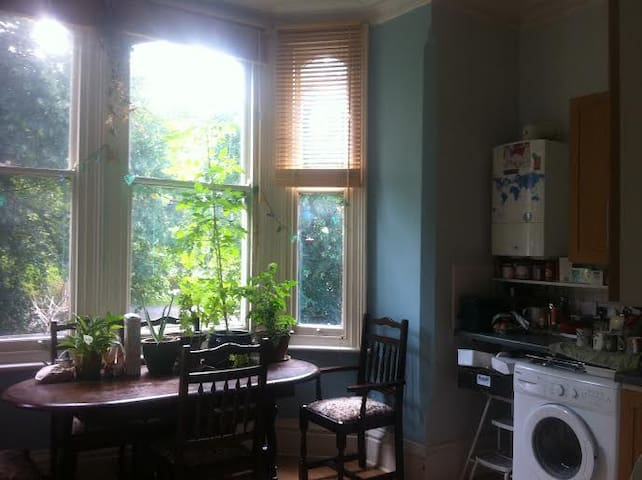 Cosy and central flat surrounded by green space - Nottingham - Leilighet