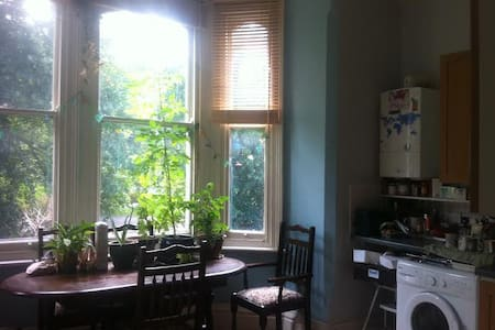 Cosy and central flat surrounded by green space - Nottingham