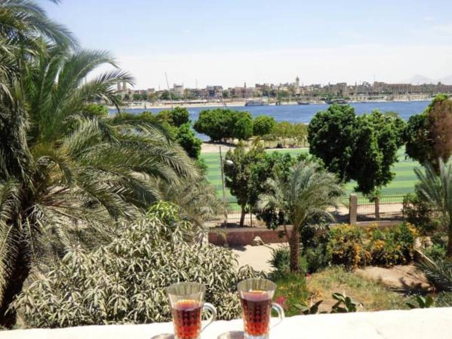 Nile view  from my rooftop