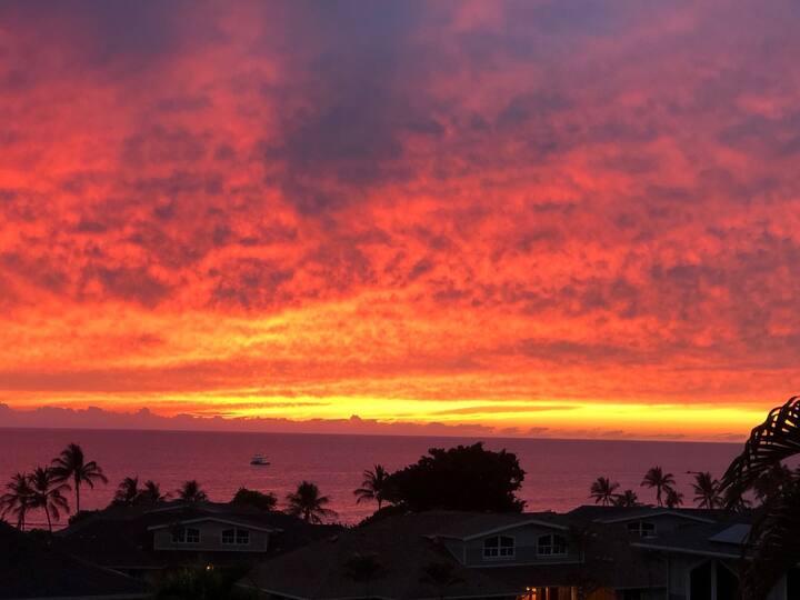 Luxury Ocean-View Condo for rent