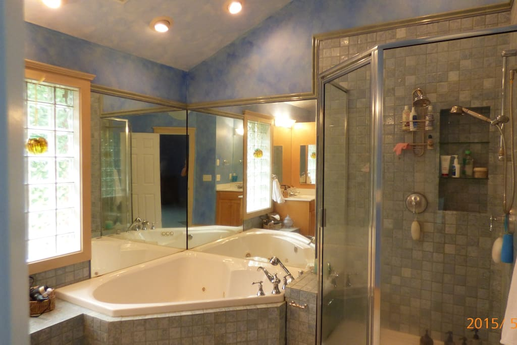 Master bath with Shower and Large Jacuzzi Tube