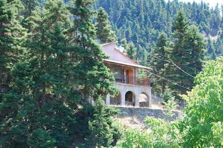 Κατοικία στο βουνό μέσα στα έλατα - Kriatsi
