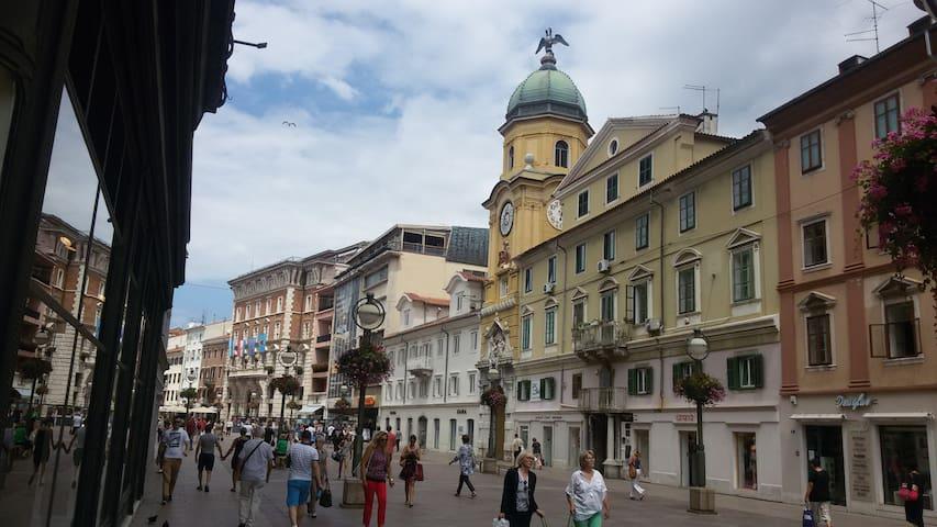Apartment Stari grad