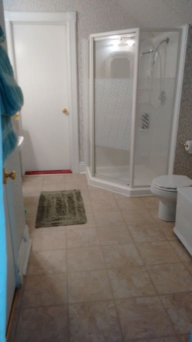 Large Ensuite Bathroom with shower and exit to common area.