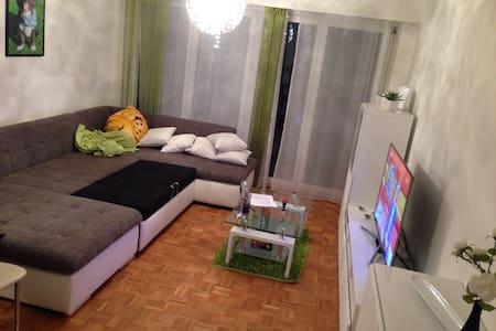Schlafsofa in 2 Zimmerwohnung - Winterthur - Lägenhet