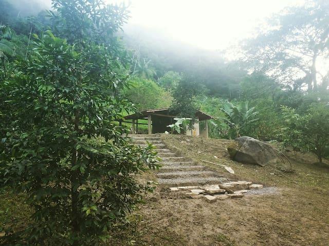 Camping na Floresta - Toca da Serra PETAR
