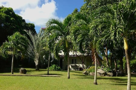 Affordable, Comfortable, Tropical Retreat - Vieques - เกสต์เฮาส์