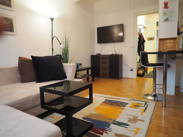 comfortable 2 rooms apartement in the city