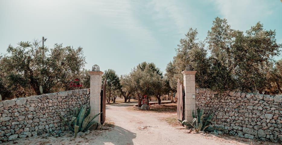 Entrata Residence Eliados