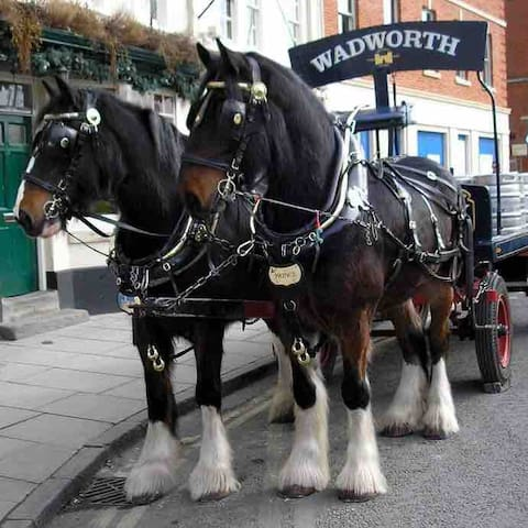 Wadsworths Shire Horses delivering beer to the local pubs